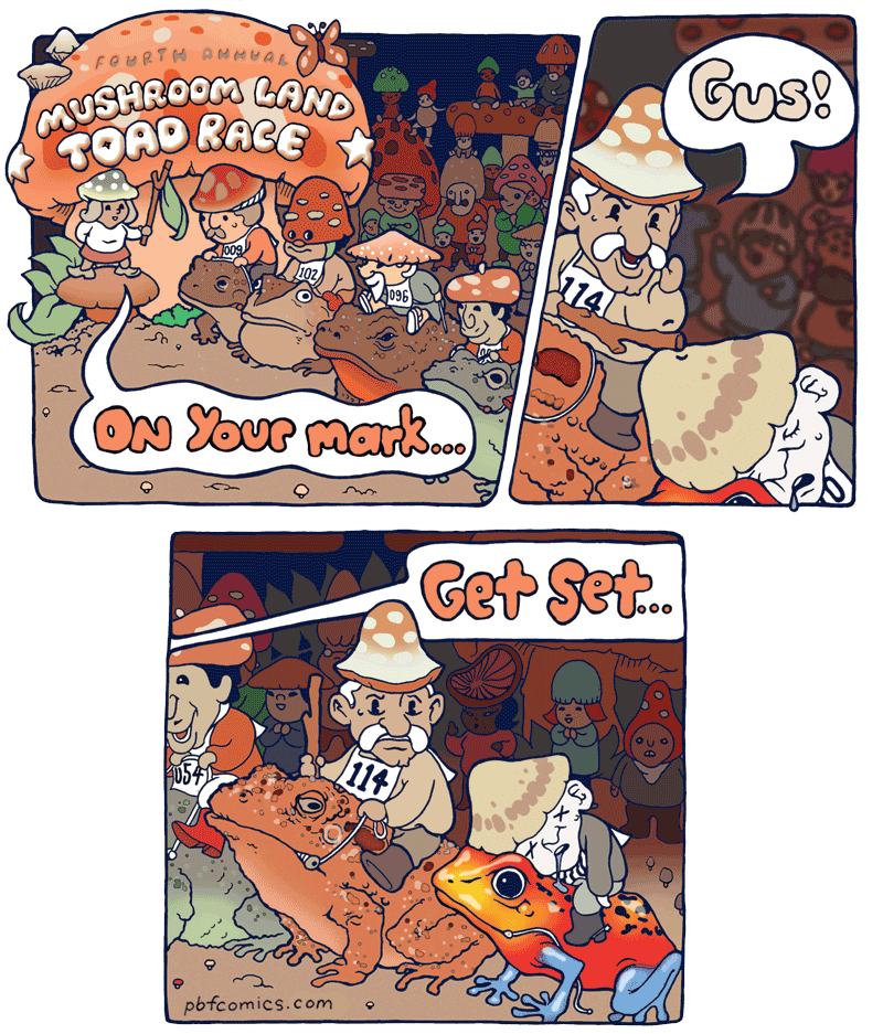 Toad Race
